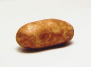 hotpotato2